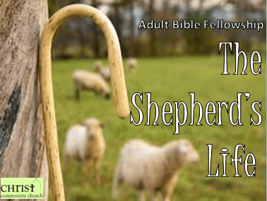 shepherd life abf graphic