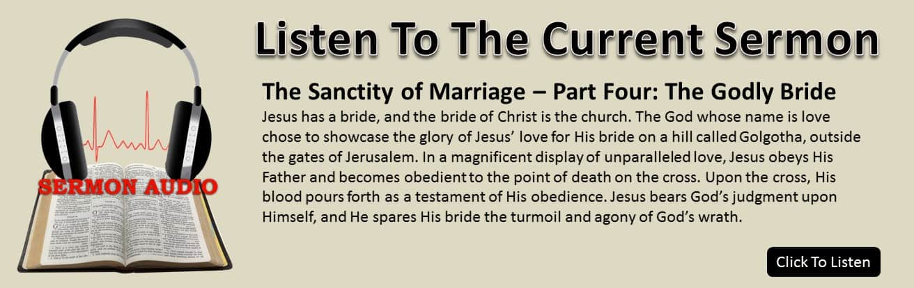 The Sanctity of Marriage – Part Four: The Godly Bride