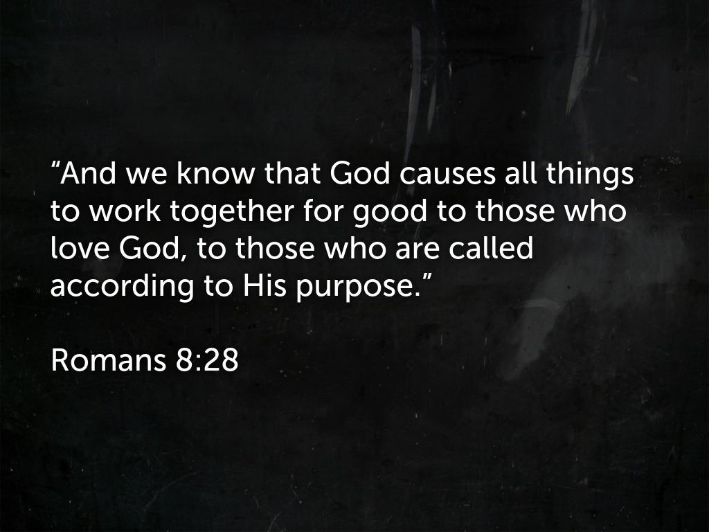 Romans 8_28