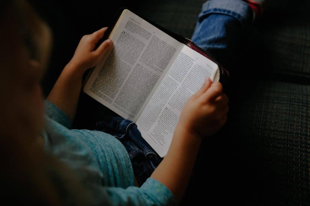 bible - kid-2603859_1920