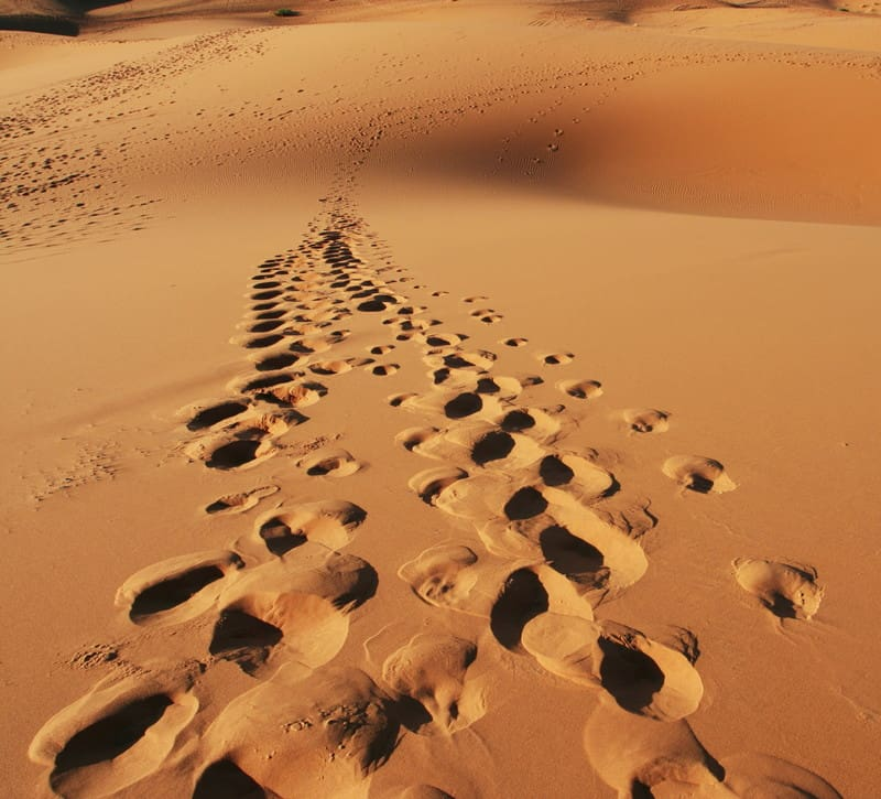 footprints canstockphoto9864588