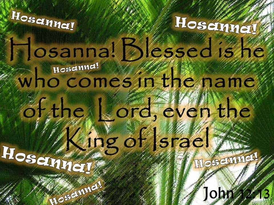 Palm Sunday - Worship Jesus Alone