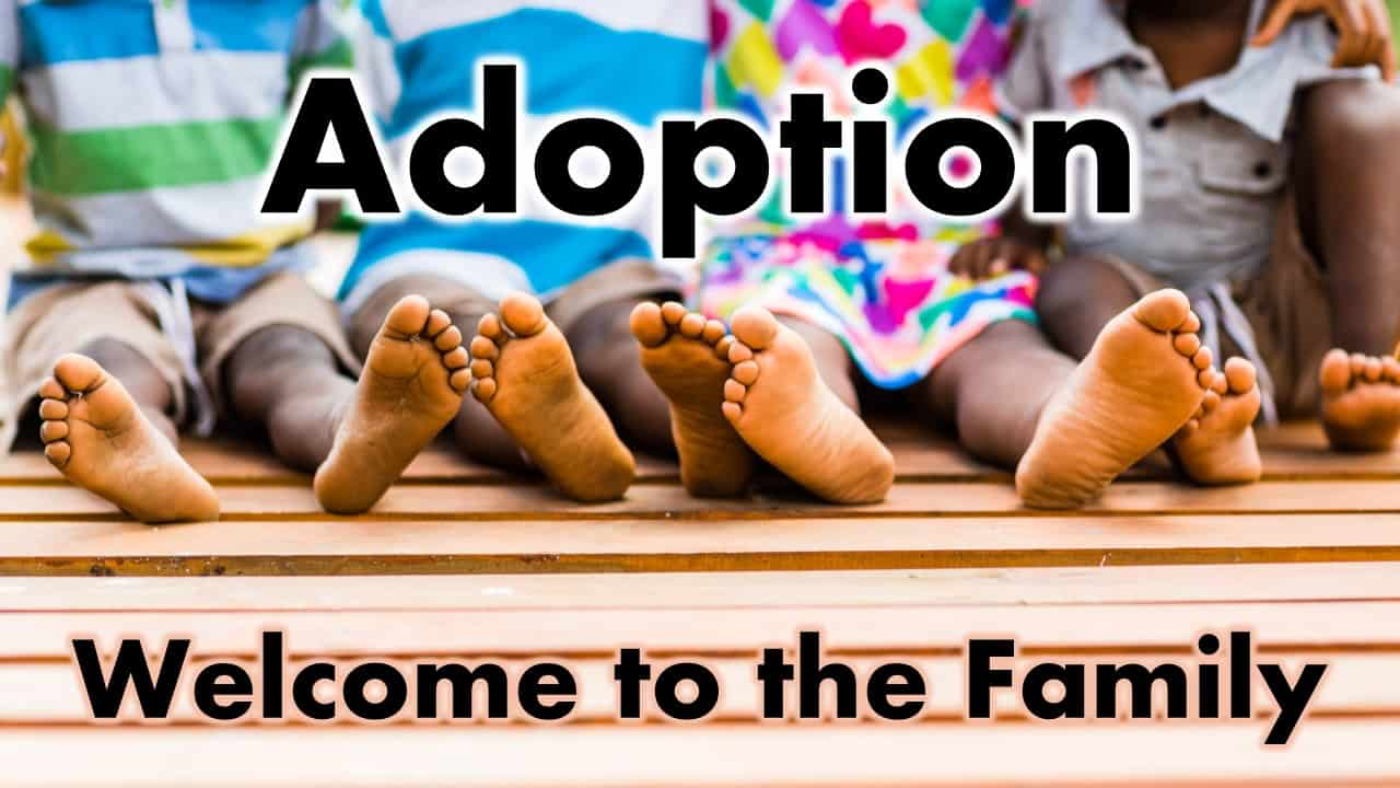 Adoption, Welcome To The Family
